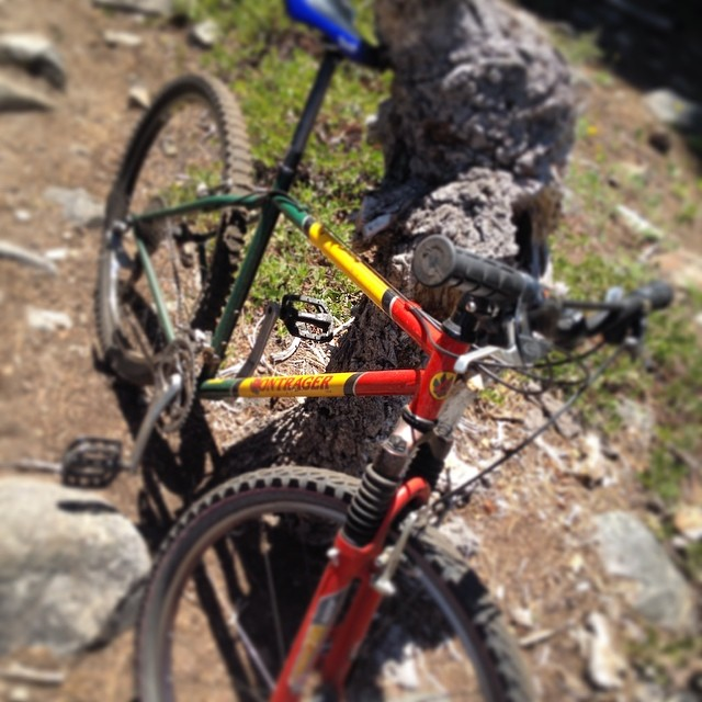 Perfect day in #Tahoe to pull out the old #rasta hard tail. #summerofshred #bikelife