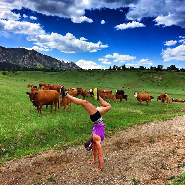 Handstand whore! @prana @nexstepproducts