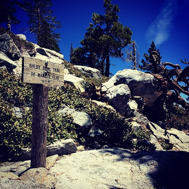 Mt. Baldy in the Summer time. Check out the beta post on facebook.com/thegnarcissistic. #sangabriels #hike #beta #losangeles #ca #outdoorpassion #GNARCISSISTIC