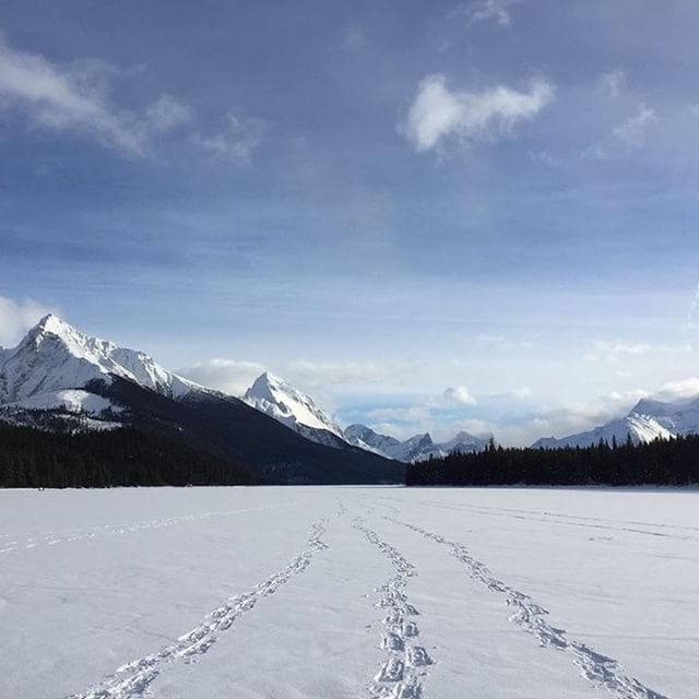 Tell us in the comments what your favorite snowy view is! PC: @corksterr at Maligne Lake, Jasper