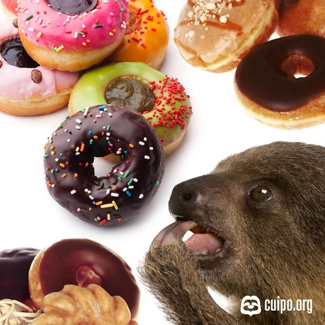 Don't worry, be happy. It's Friday and #NationalDonutDay. We hope the hardest decision you make today is which