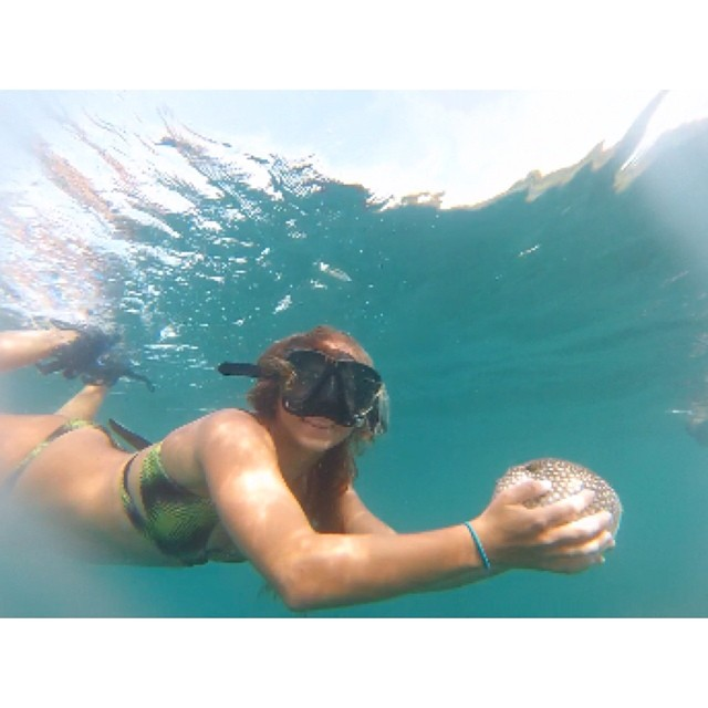 Once upon a time @bailey.rosen kissed a puffer fish... #miola #miolainthewild #costarica #puravida