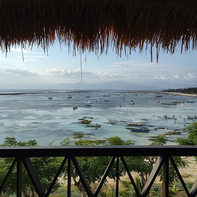 Our new view #nusalembongan #bali #indo #seaweedfarms #islandhopping #islandlife
