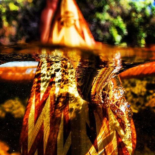 Have a good stroke today, or something along those lines. #sarahleephoto #paddlehi #paddlehawaii #woodisgood