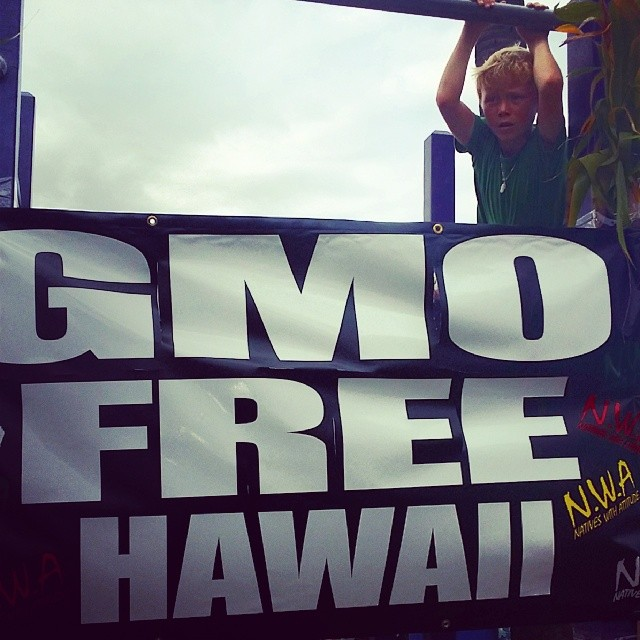 #himinded #maui #gmo #shakamovement #monsanto #evictmonsanto #hawaii