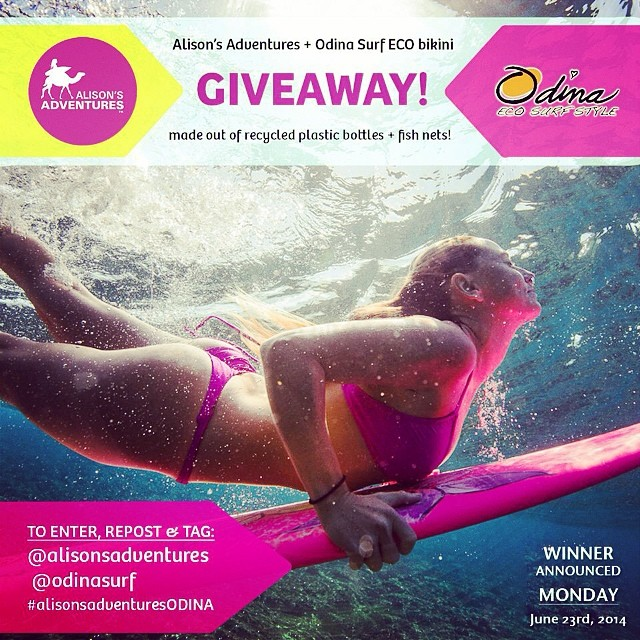 "Supporting USA and @alisonsadventures  we want you to #Dive into summer in a new ""Alison's Adventure pink ECO bikini"" by @Odinasurf  You can Win a bikini by following these two easy steps:  1) Follow @Odinasurf & @alisonsadventures on INSTAGRAM ONLY 2)..."