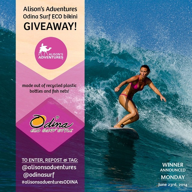 """Dive into summer in a new """"Alison's Adventure pink ECO bikini"""" by @Odinasurf  Win a bikini by following these two easy steps:  1) Follow @Odinasurf & @alisonsadventures on INSTAGRAM ONLY 2) Repost this photo and tag @alisonsadventures @Odinasurf..."""