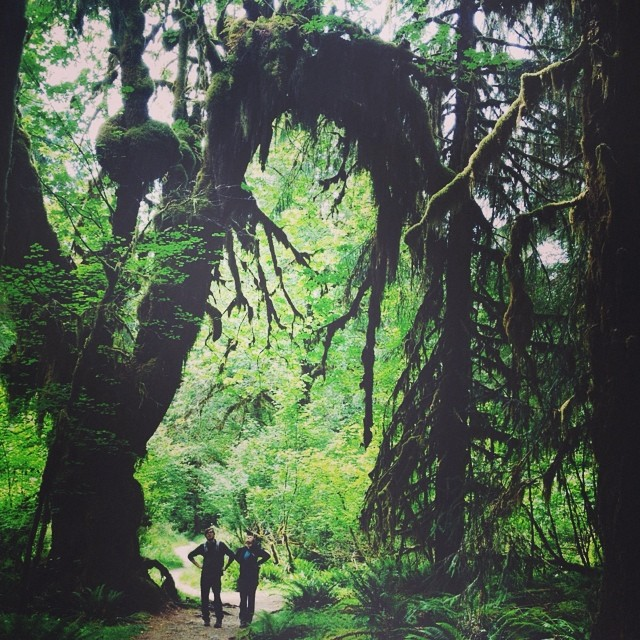 @bananya shared some photos from her trip to Olympic National Park #radparks #summeradventures
