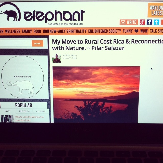 So cool to see a story by our own @pilsallo in @elephantjournal!