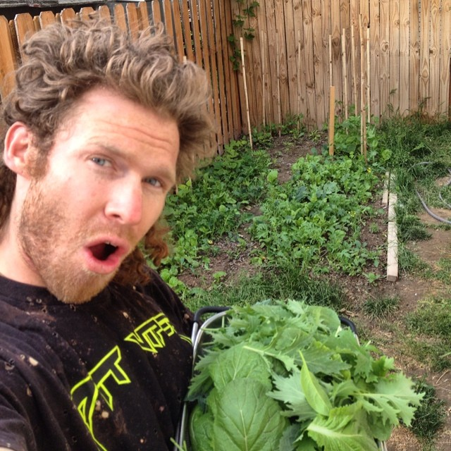 Whoa! The Garden is going off! TanSnowMan marvels at the bounty of greens he just harvested, while pea plants dance up their bamboo trellises, and the bush beans, cucumbers, beets, purple carrots, and squash make a nice home for themselves in this...