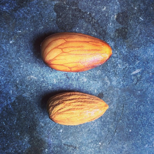 soaked raw almonds > raw almonds
