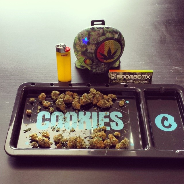 Session. @cookiessf @rollyourownpapers #grapes #bayarea #caligrown #herbal #marijuana #smoke #rollingtray #papers #planes #tgod #bic #sunday #loudpack #boombotix