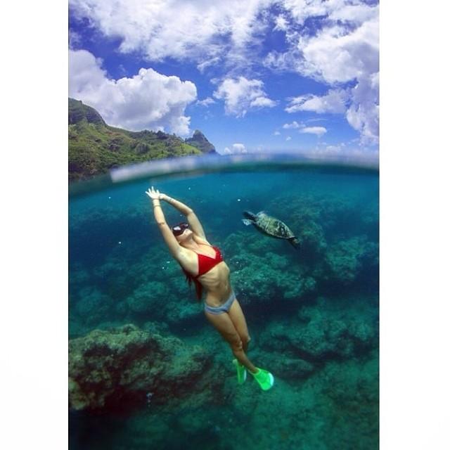 Heaven!  Regram from @chelseakauai  We love to see #miolainthewild !  #mermaids #sea #ocean #underthesea #miolainaction #bikini #babe #siren