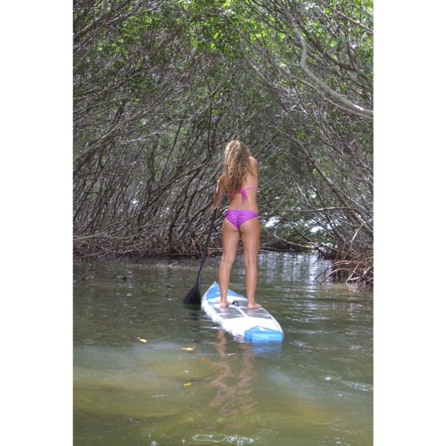 Exploring the mangroves at home in Florida. Check out Mi-Ola.com to see the new prints like Rosa Vertebra!!
