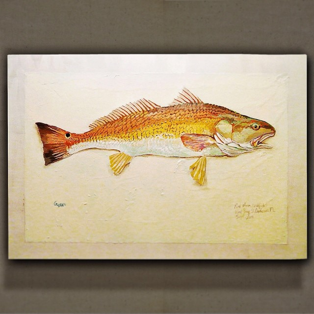 Redfish gyotaku. Love painting these.