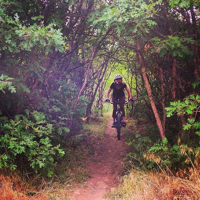 Getting after some epic single track in #Carbondale, #CO. #bikelife #mountainbiking #summerofshred