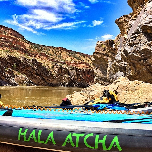 Hala Atcha in Westwater Canyon
