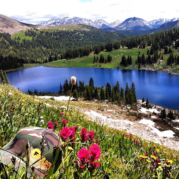 The view from 11,500' atop Lyle Lake. The #wildflowers are going off right now!