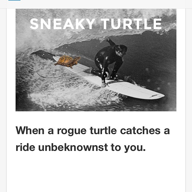 Learn about more common surf moves at kinda-fancy.com  #surfbikini #surf #sanfrancisco #california #turtlesinahalfshell #turtlepower