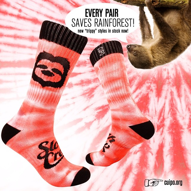 Have you checked out our 5 new styles of #CuipoSocks? There's something for everyone! #SaveRainforest #HappyFeet #StaySlothy