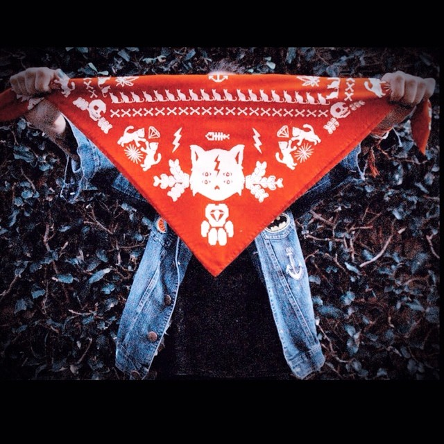 Bandana ❤️ #pixelart #pixel #red #scarf #fashion #cat #design #stamp #look #style