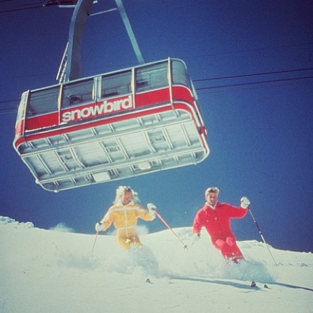 Regram from @skisnowbird. This shot is excellent. That's all.
