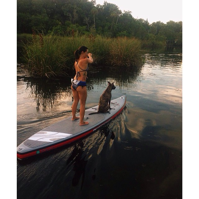 Our team rider @waveofwellness always on the water. #taxiservice #girlswhorip #beauty #health #fitness #earth #water #passion #love #life #adventure #standup #sup #freedom #happiness #live #nature #sup #puppylove