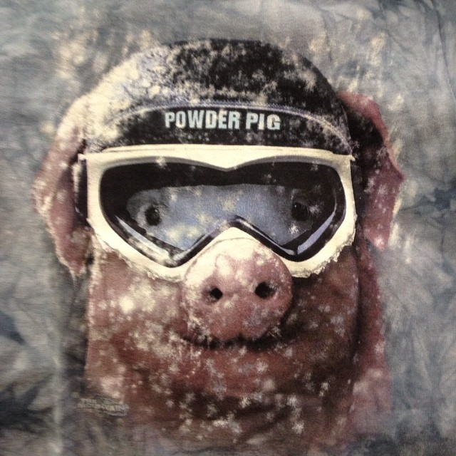 Are you a powder pig?