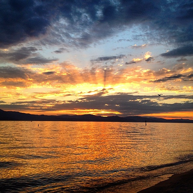 This happened again. #laketahoe #risedesigns #riseinspired
