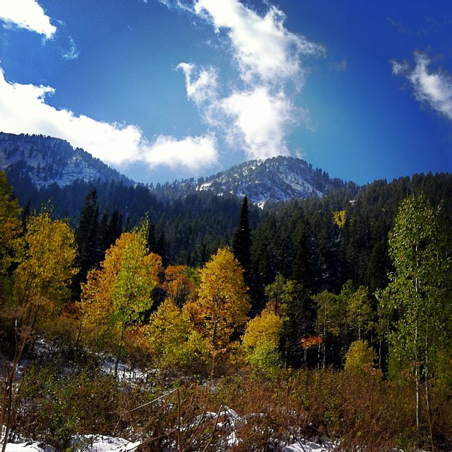 Fall meets winter high in the #Wasatch #mountains of Utah.