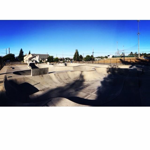 Port Angeles skate park!  One of the favorites on the trip.  #bonzing #portangeles #skatepark #skateboarding