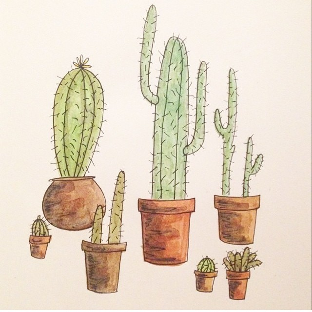 Are cacti the same as succulents? We're not sure but we know we like these spiky illustrations of house plants that can withstand a fair amount of indifference. #draw  #flora #allswell