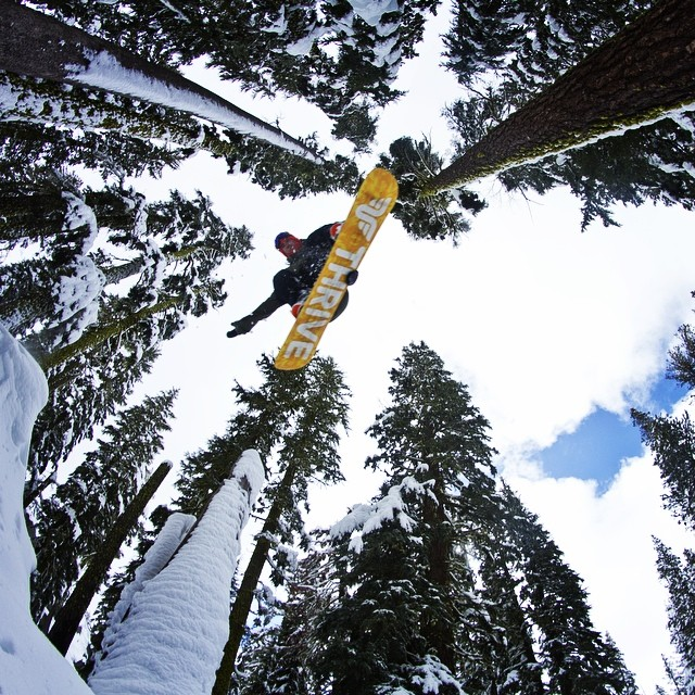 Airing through the trees #flyover #tahoe @moofosta #thrivesnowboards #trees #missingwinter #bluesky @colintahoe #sickshot