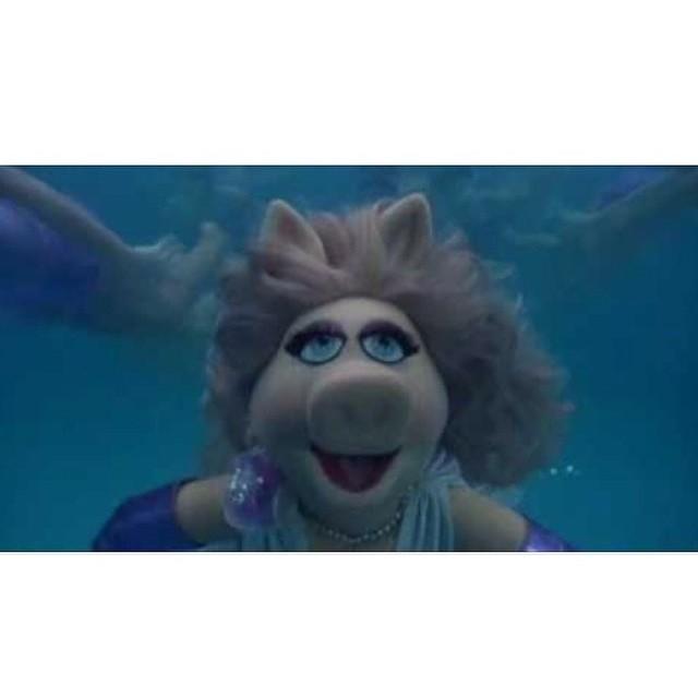 Embrace your inner mermaid #misspiggy #merpig #allswell
