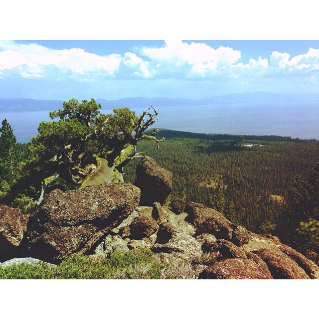 Gaze from Watson Peak. #thisistahoe