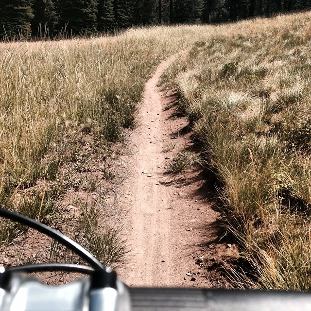 Buff Tahoe single track. Enjoy the summer Mtb and preparing for winter all at the same time.