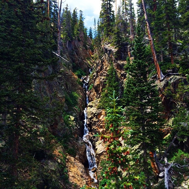 All the rain #Colorado has received this summer is keeping the high country exceptionally green for this time of year.