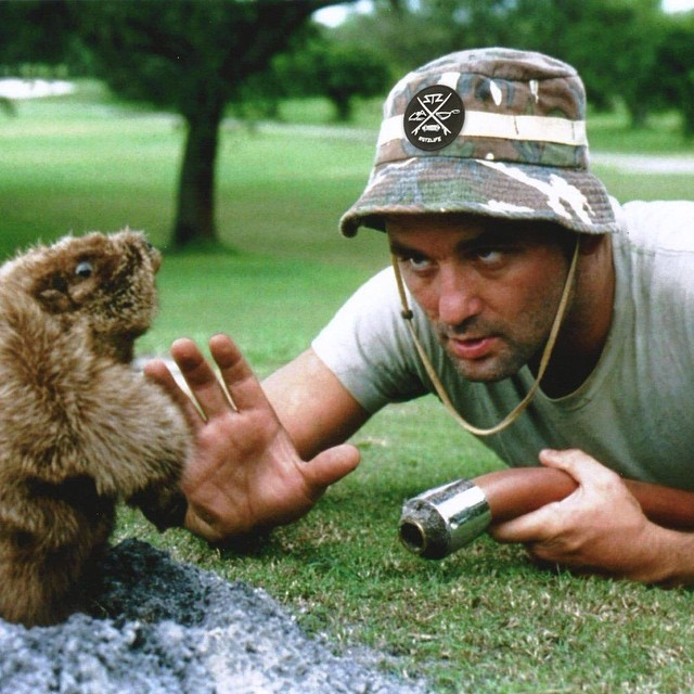 WIN A FREE BUCKET HAT // Yeah it's Monday but tag a friend and your local shop for a chance to win a bucket hat // Dont forget to give it a like also // #freestuff #stzlife #buckethat #caddyshack #mondayblues #billmurray