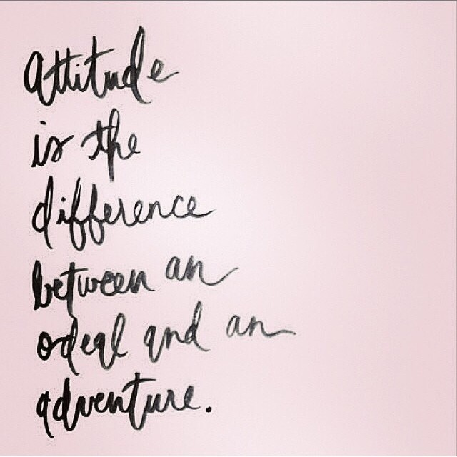 Choose adventure! #avalon7 #futurepositiv #optimistic www.avalon7.co