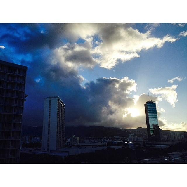 It's go time #alohafriday @organik #wiseguides #concretejungle #itakebioastin