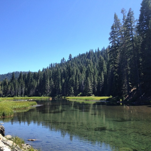 Tahoe sure is picturesque #bikepath views #skatethelake #skateboarding #longboarding #tahoe #laketahoe #truckee #river
