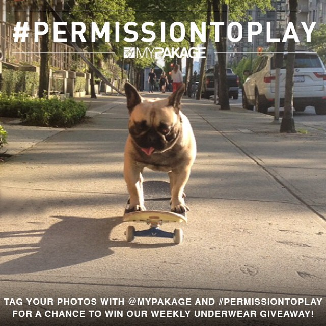 "Even the head of our HR department ""Hector"" gets down on #permissiontoplay - let's see your photos this week!"