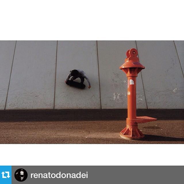 #Repost de @renatodonadei ---