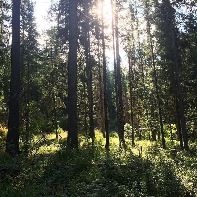 Company Retreat #NatureOfProof