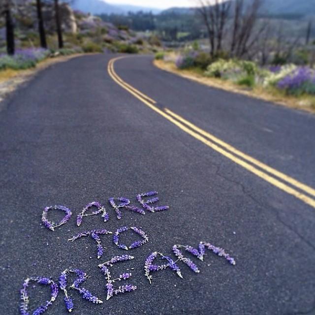 #monday #pinspiration!  #Dream... Regram from @penheartspaper