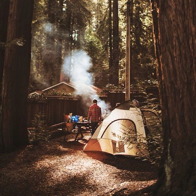 this gorgeous campsite from @norquayco makes us happy., #camping #fire #tent #redwoods #campvibes #ourroots