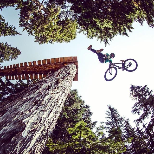 Bearclaw tailwhip. #nicolirogatkin #mountainbike #slopestyle