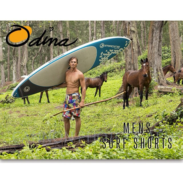 Even the mustangs loved these new boards. They came a running.  #interaction #kalamaperformance #imaginepaddlesurf  #odinasurf #paddlehawaii #artofboard #irideirecycle #wiseguides #visionsofsummer #lifeinhifi #teambioastin @imagine_paddlesurf...