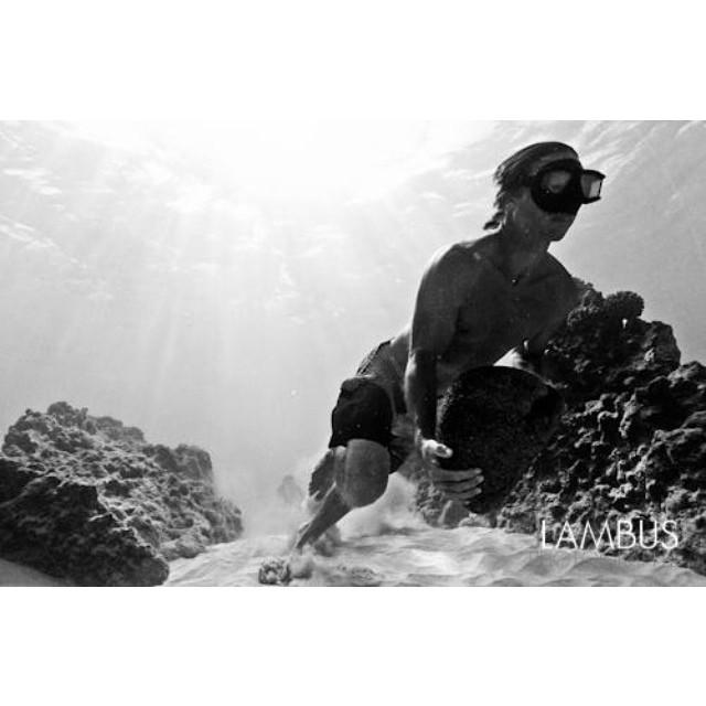 I run, I take BioAstin. I paddle, I take BioAstin. I relax, #itakebioastin #itsthebest #hawaiianastaxanthin @itakebioastin @nutrexhawaii #pushpower #teambioastin