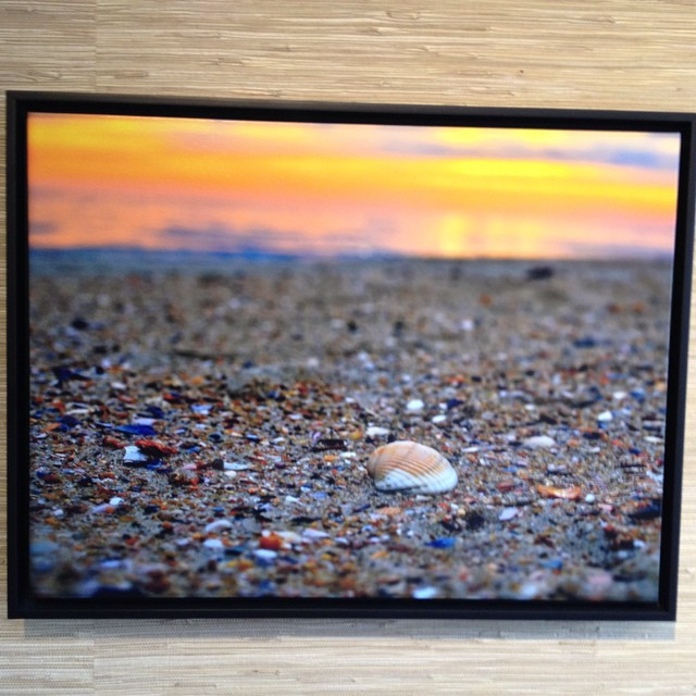 Love this beautiful photo by @norcalphotog on display @equatorcoffees @prooflab @highlinefestivalofsurfing - if you need birthday present ideas this will do :-) #surfing #beach #seashell #beachcomber #ocean #beachlife #sunset #highlinefestivalofsurfing...